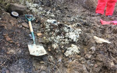 Contamination Testing: An Investigation Of Asbestos