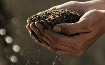 What Is The Difference Between Cohesive And Non-Cohesive Soils?
