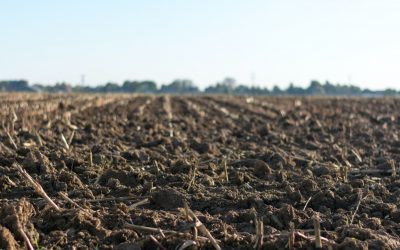 What Is Soil Mixing (Soil Stabilisation)?
